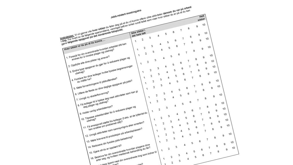 Skjermdump av spørreskjemaet jobbrelatert mestringstro